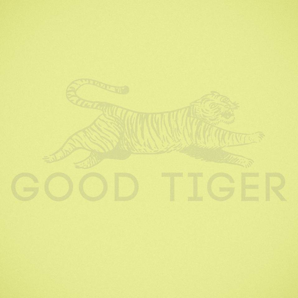 Good Tiger – A Head Full of Moonlight